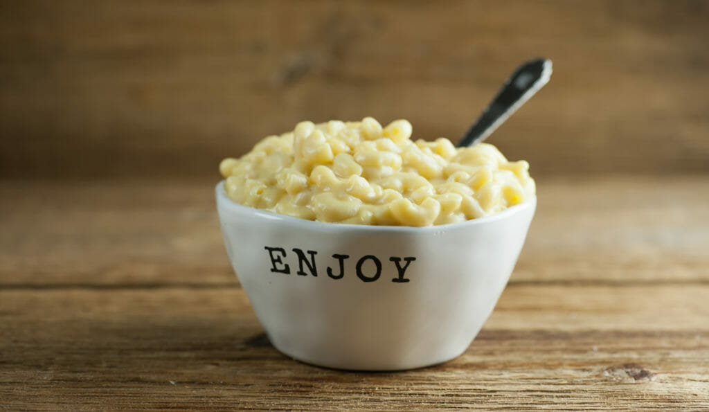 Creamy Stovetop Macaroni and Cheese